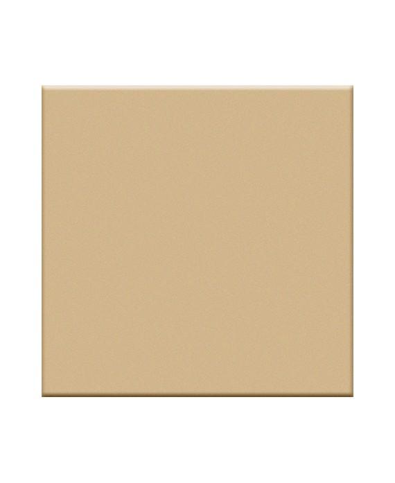Mosaique en grès cérame mat de couleur beige 5X5 cm
