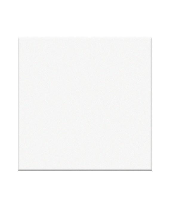 Mosaique blanc brillant salle de bain cuisine sol et mur 5X5cm VO ghiaccio
