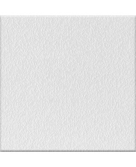 Carrelage antidérapant blanc salle de bain terrasse plage de piscine 20x20 cm, R11 A+B+C VO IG ghiaccio