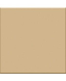 Carrelage beige mat de couleur cuisine salle de bain mur et sol 10X10cm grès cérame émaillé VO beige