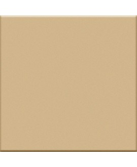 carrelage mat beige 5X5 cm