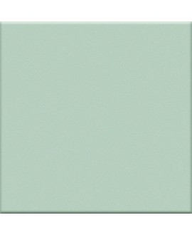 Carrelage vert mat de couleur cuisine salle de bain mur et sol 10X10cm grès cérame émaillé VO giarda