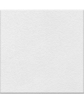 Carrelage blanc antidérapant salle de bain sol de douche 20x20cm 10x10cm 5x5cm sur trame R10 VO RF ghiaccio