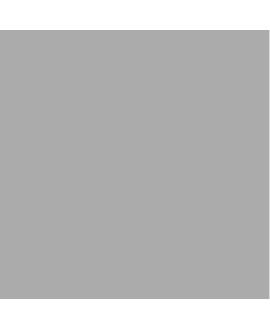Carrelage D dalia gris 25x25cm