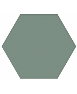 Carrelage D hexagone uni vert 25x22cm