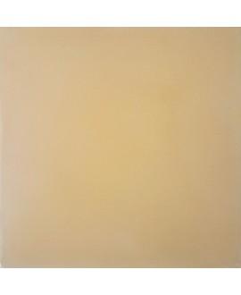 Carrelage ciment uni beige 20x20cm véritable 21